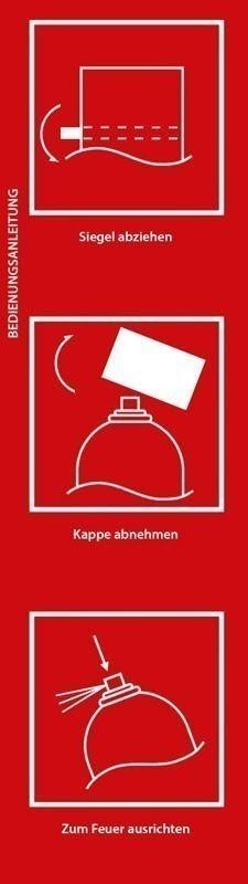 Feuerlöschspray Smartwares FS600 600ml Bild 2