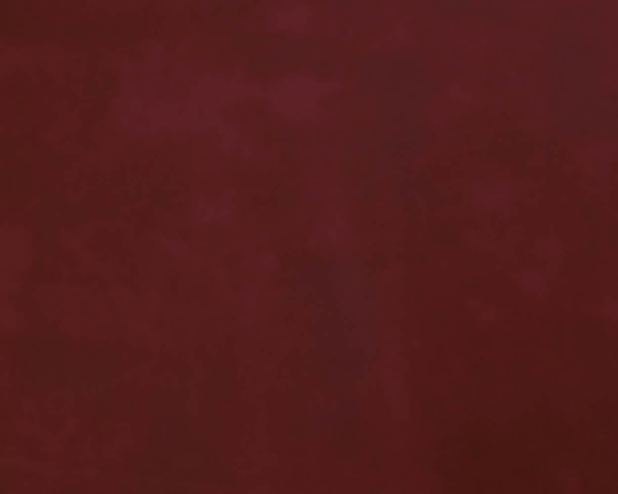 Kaminofen Justus Meva Abdeckplatte Keramik Bordeauxrot Bild 4