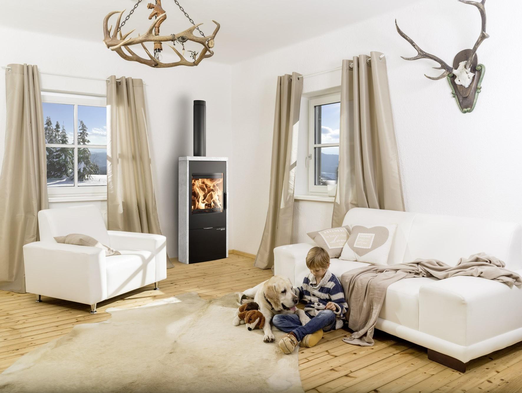 kaminofen dauerbrandofen haas sohn lausitz easy 6kw bei. Black Bedroom Furniture Sets. Home Design Ideas