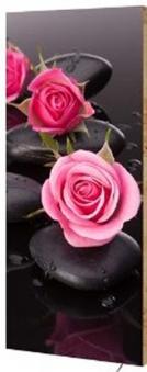 Marmony Infrarotheizung M800 PLUS Roses + Thermostat 800W Bild 1